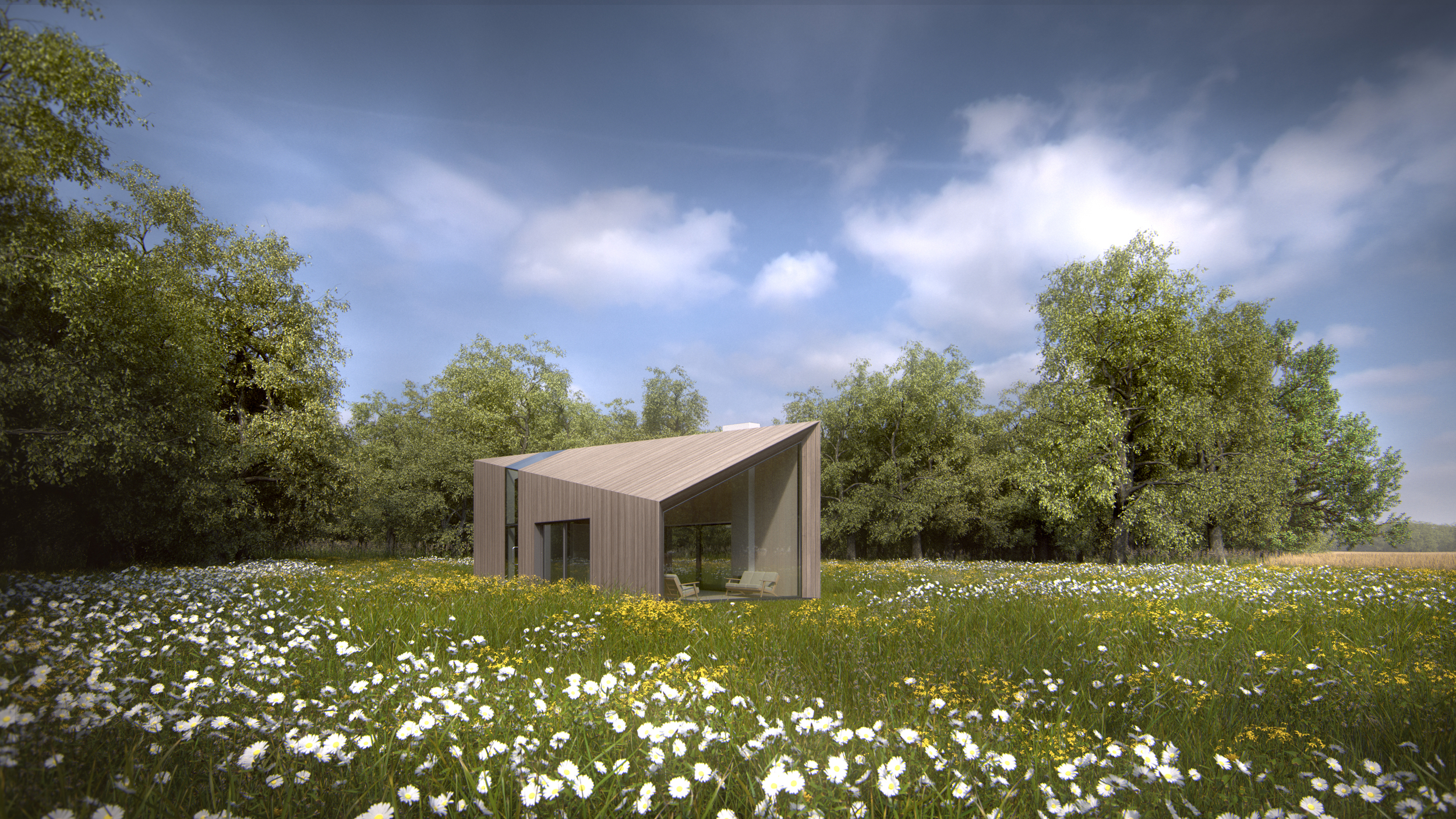 New Build Green Belt House - Wildflower Meadow 2