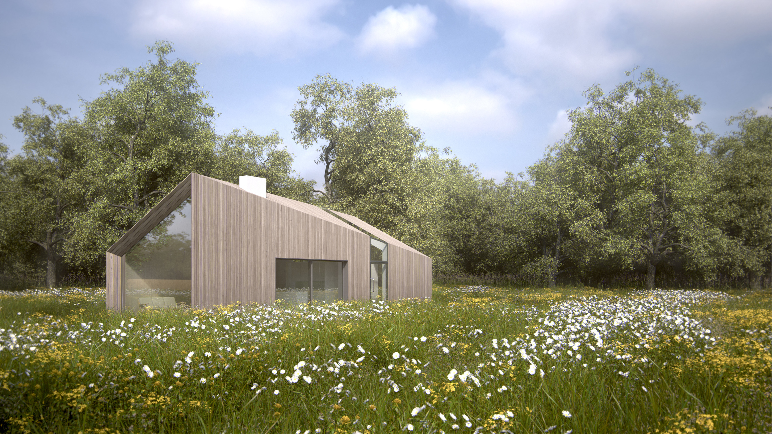 New Build Green Belt House - Wildflower Meadow 3
