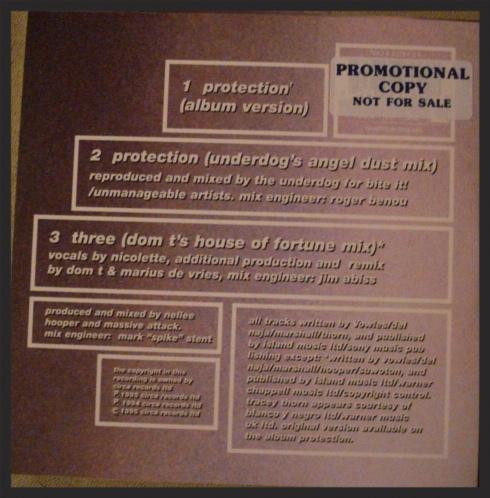 largeprotectionsingle2back.jpg