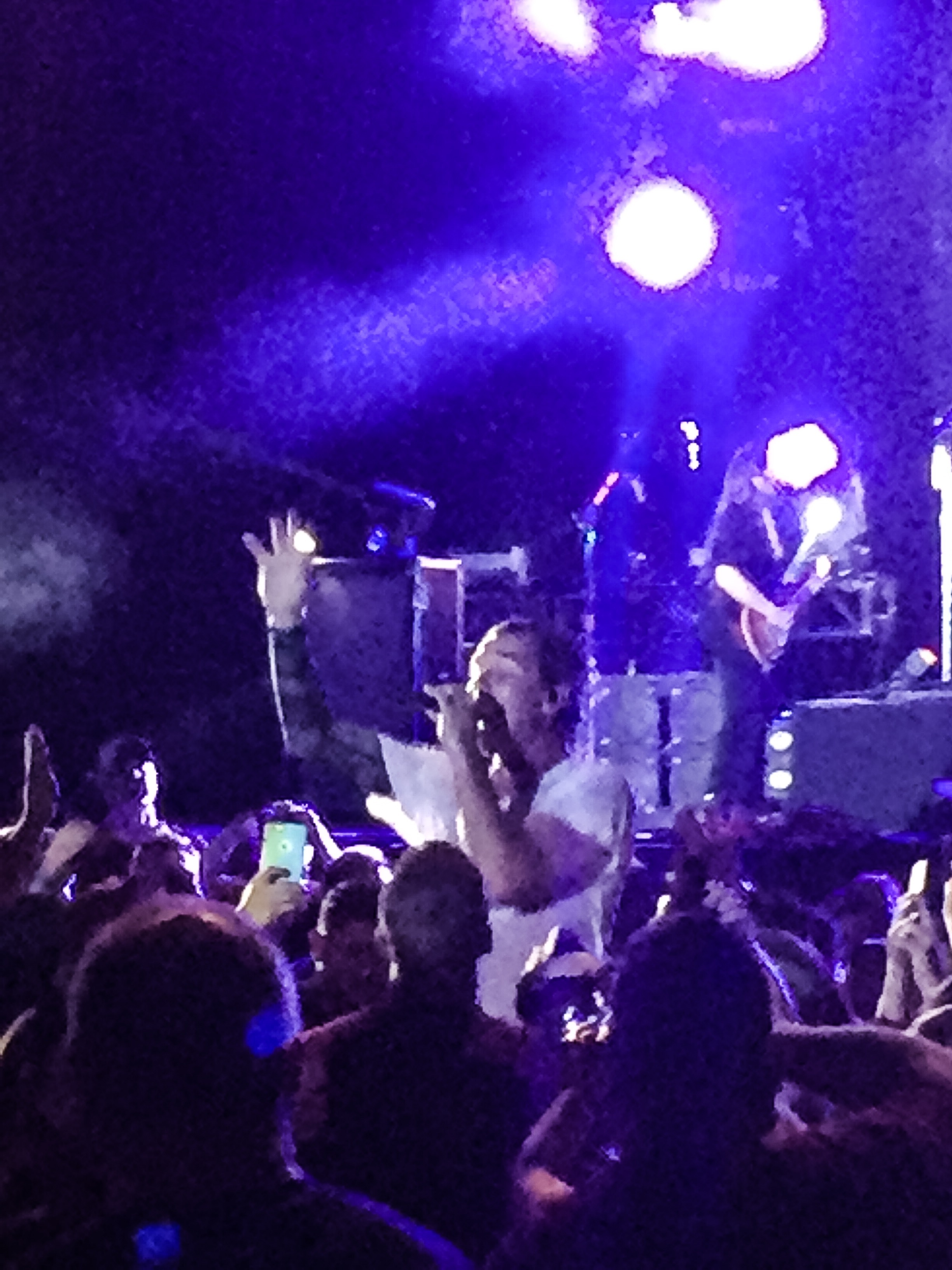 Bush singer Gavin Rossdale wades into the crowd during the band's Musikfest performance.  (Stephen Flowers Photo)
