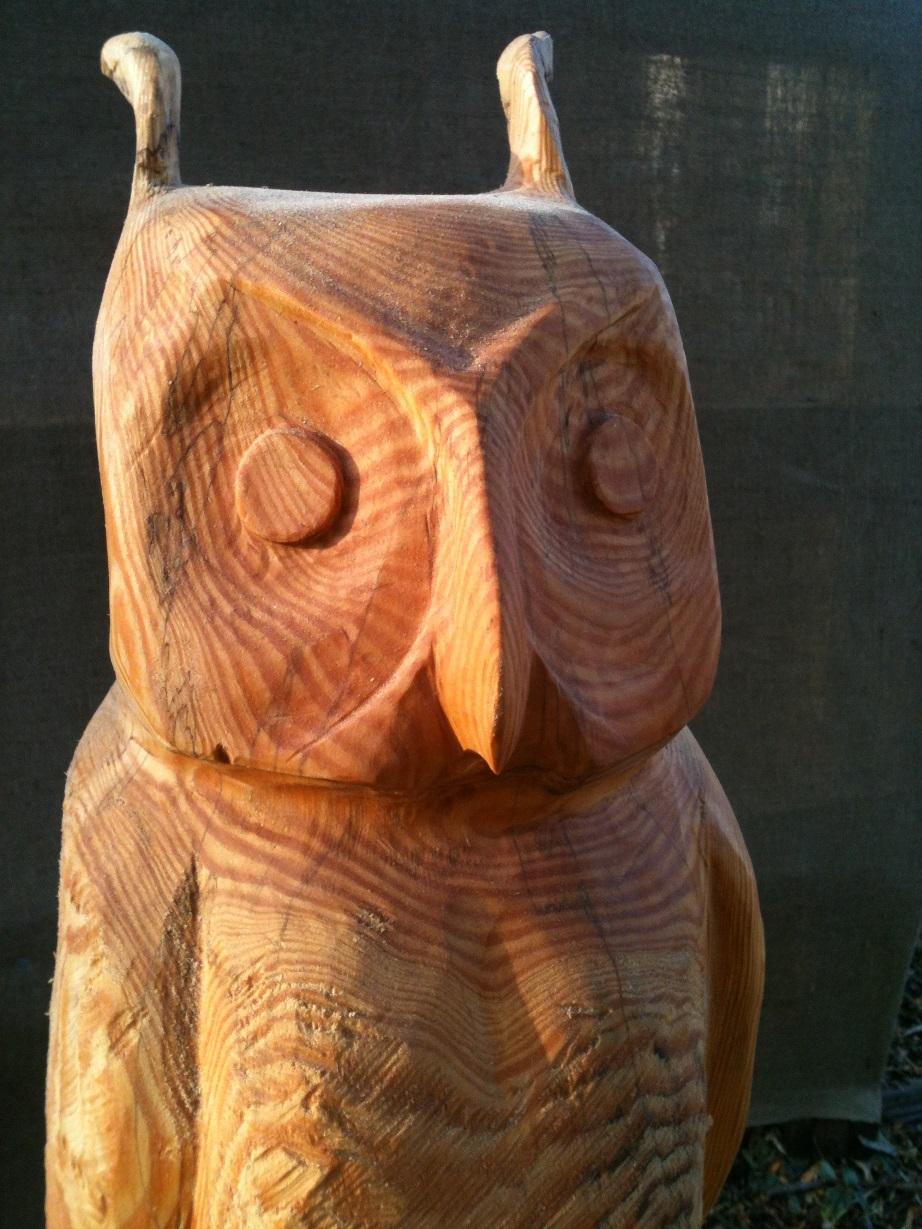 001 Eagle Owl (1).JPG