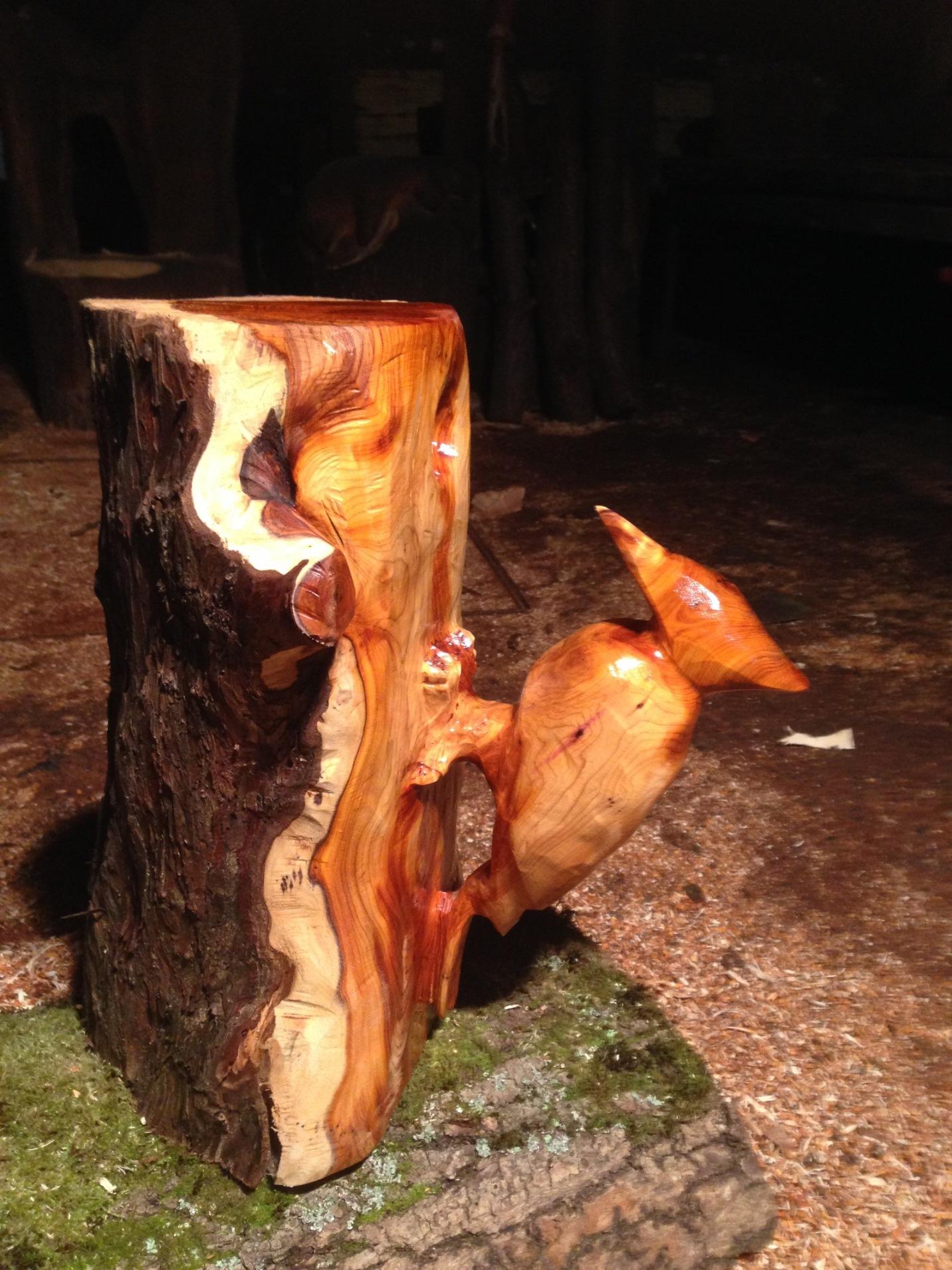 20141221 Woodpecker (6).JPG