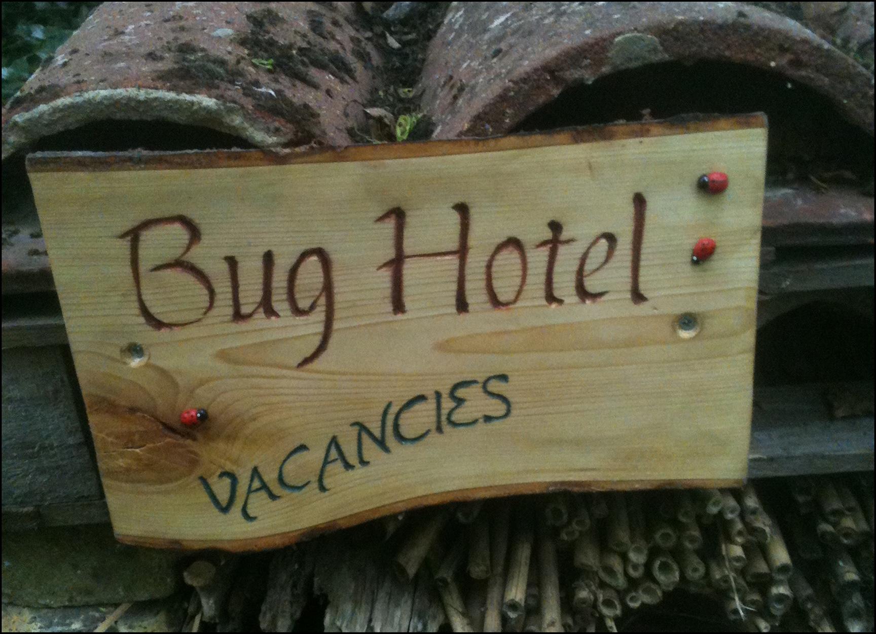 145 20130716 Bug Hotel.JPG