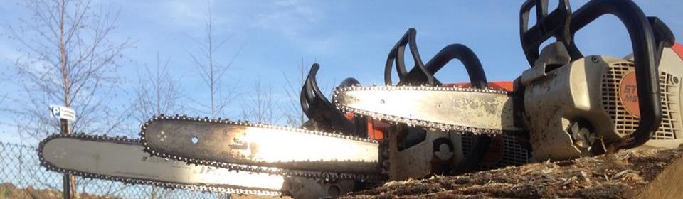 Chainsaw Bars.jpg