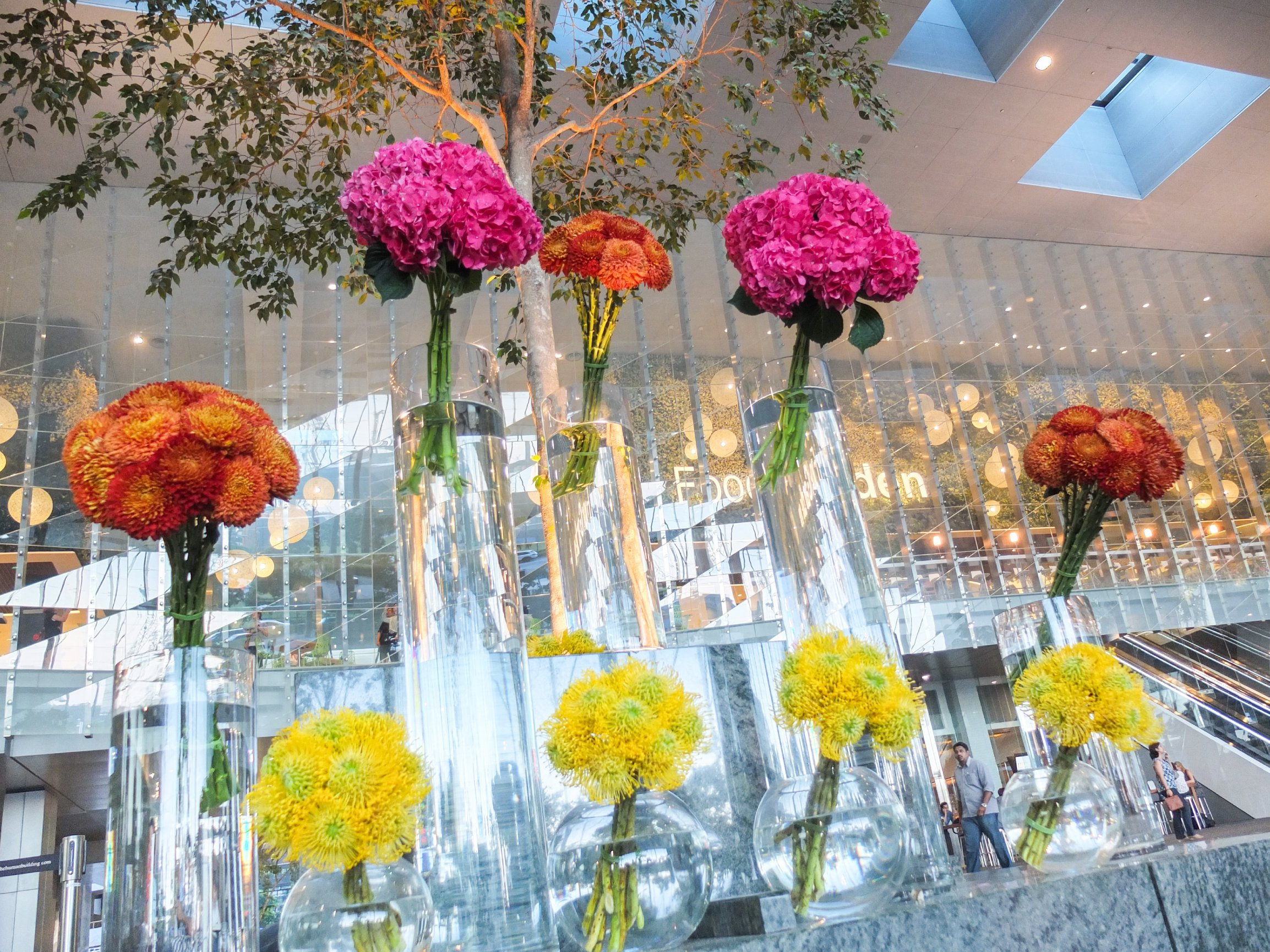 Blume Link Opening 2.jpg