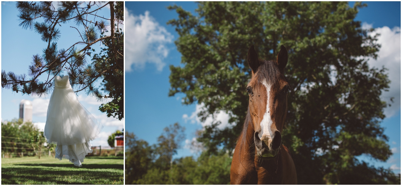 backyard_wedding (3 of 90).jpg