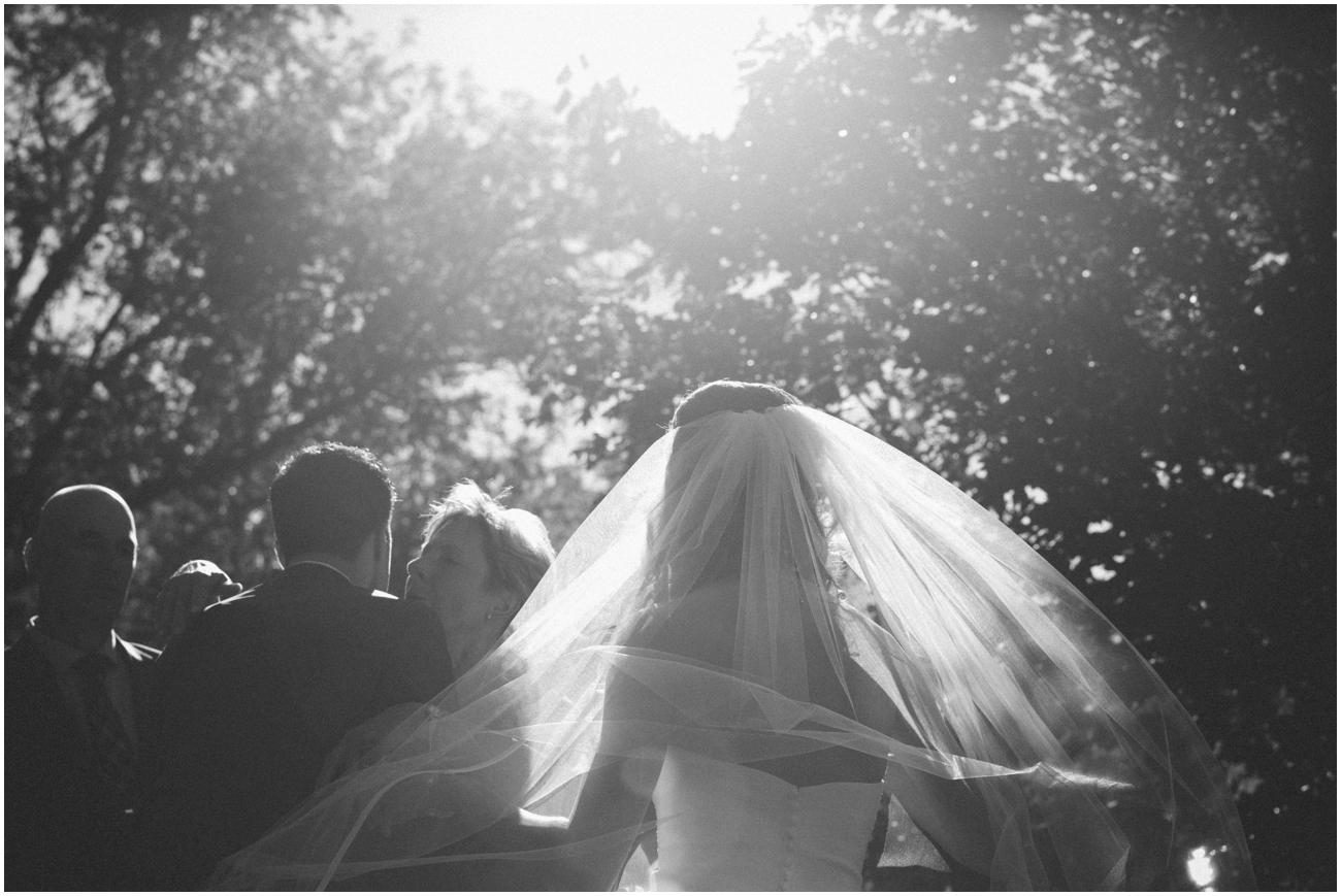 backyard_wedding (36 of 90).jpg
