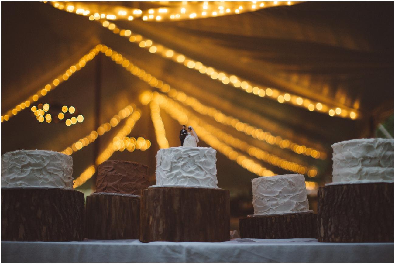 backyard_wedding (71 of 90).jpg
