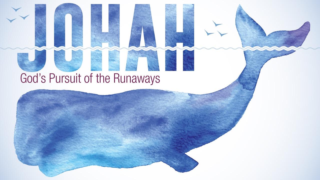 Jonah  //  7.22.18 - 9.2.18