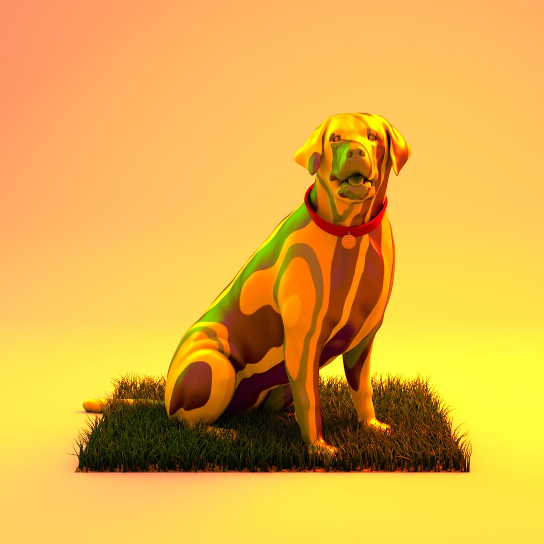 Dog_v05.JPG