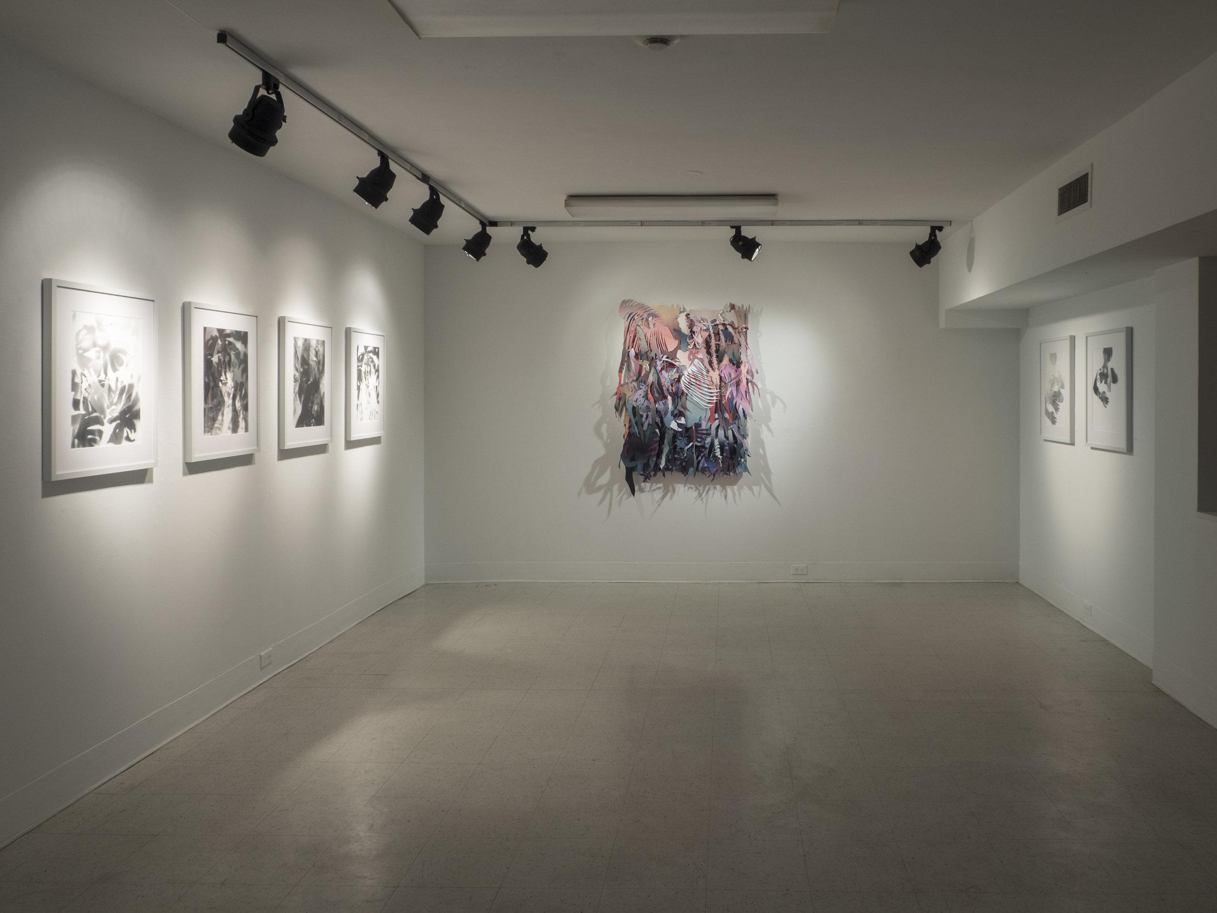 Core Stafford Gallery