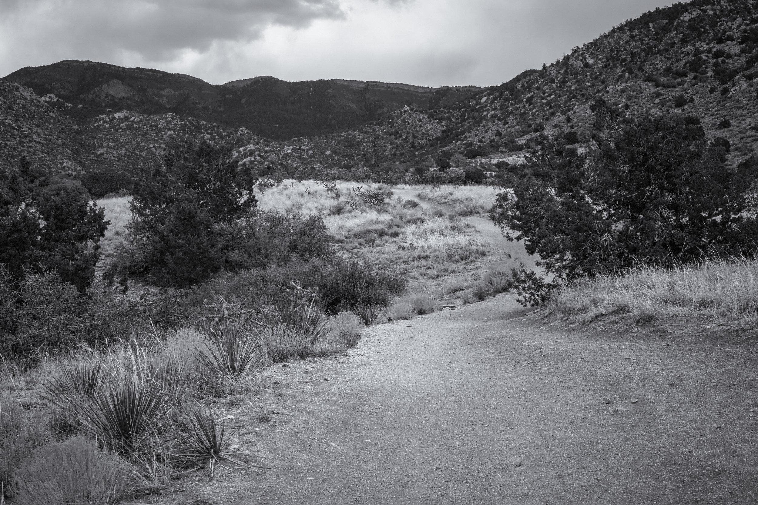 Albuquerque1.0-3.jpg