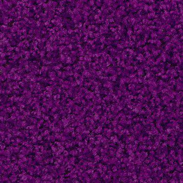 Purple / #46 Digi-Print
