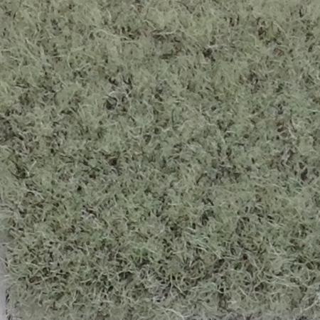 Carpet - Spruce / #611 Park Place