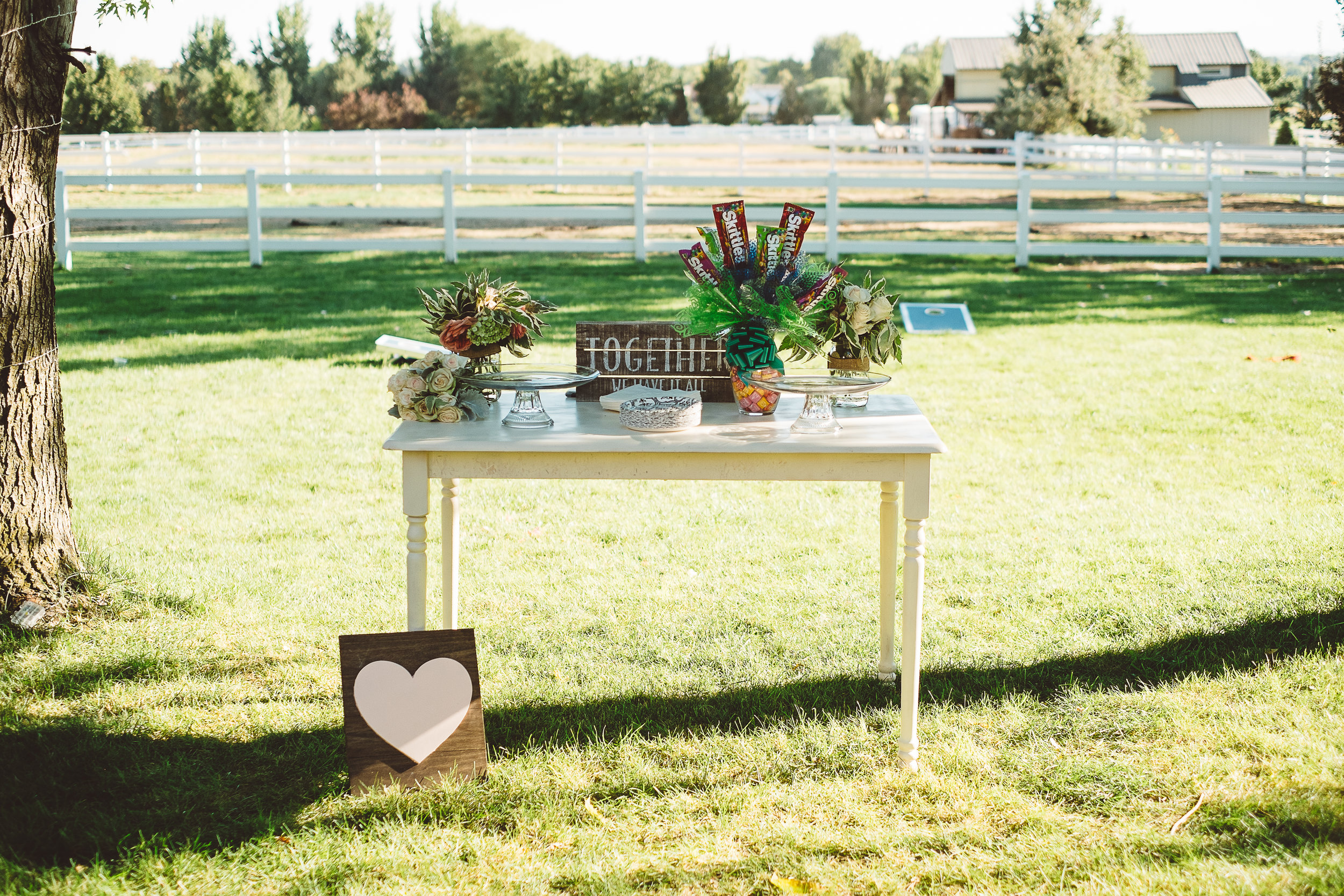 Boise Idaho Wedding Photographer-152 copy.jpg