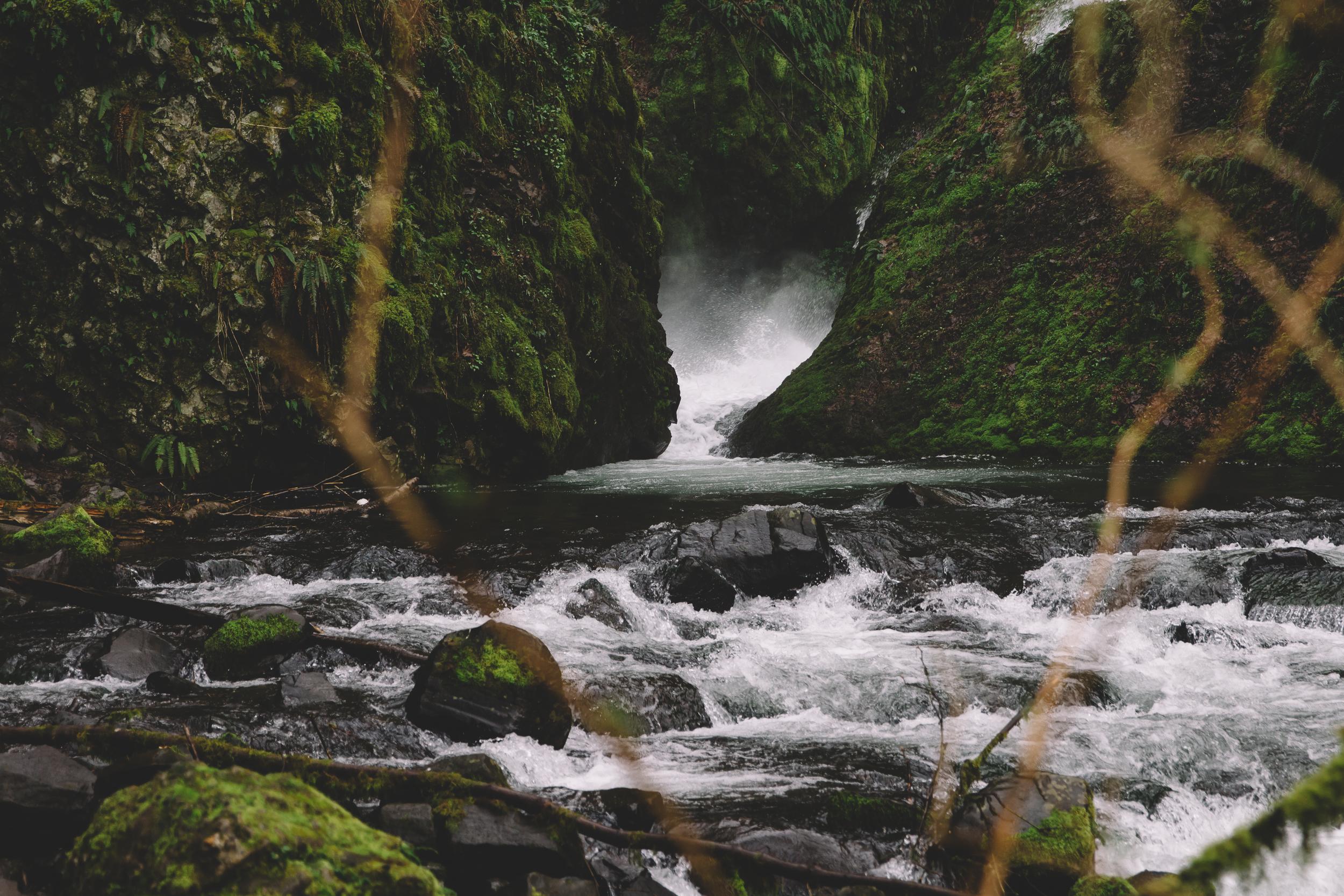 Columbia Gorge Elopement Photography-5.jpg