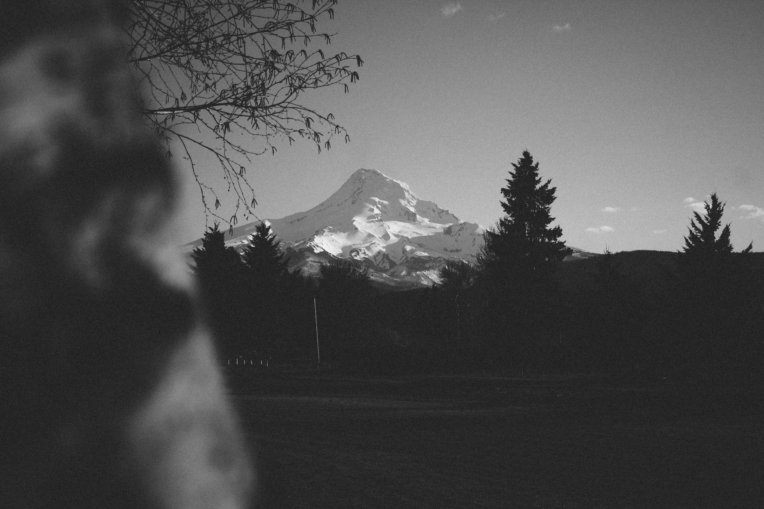 Hood River Engagement Photography-3-1.jpg