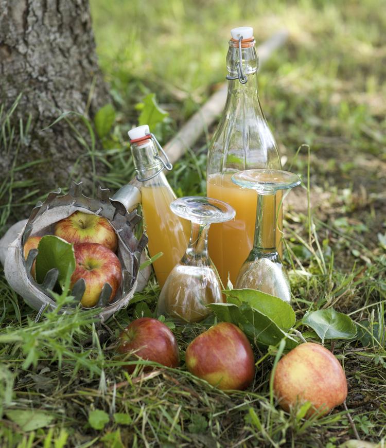 Askim frukt- og bær