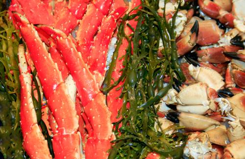 Fjordfisk-3_edited-1.jpg