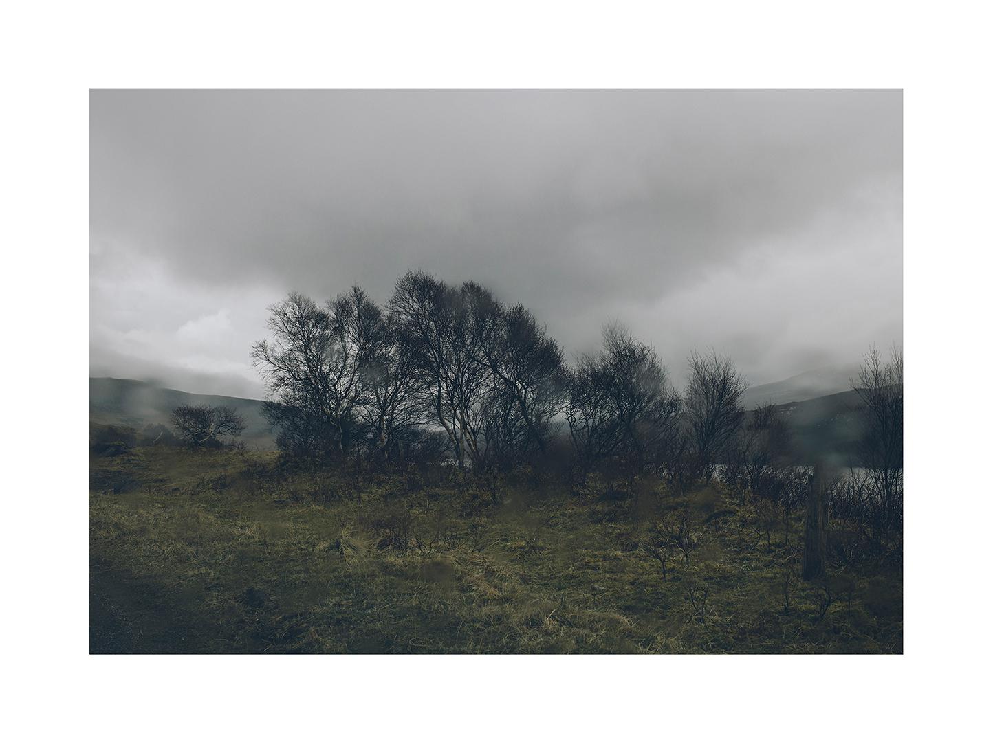 landscapes_374.jpg
