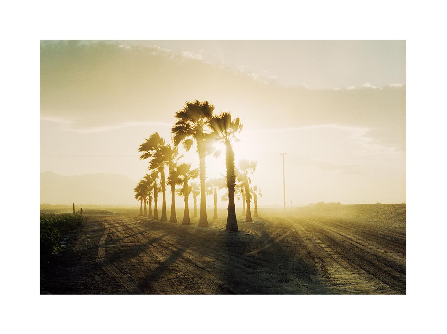 landscapes_356.jpg