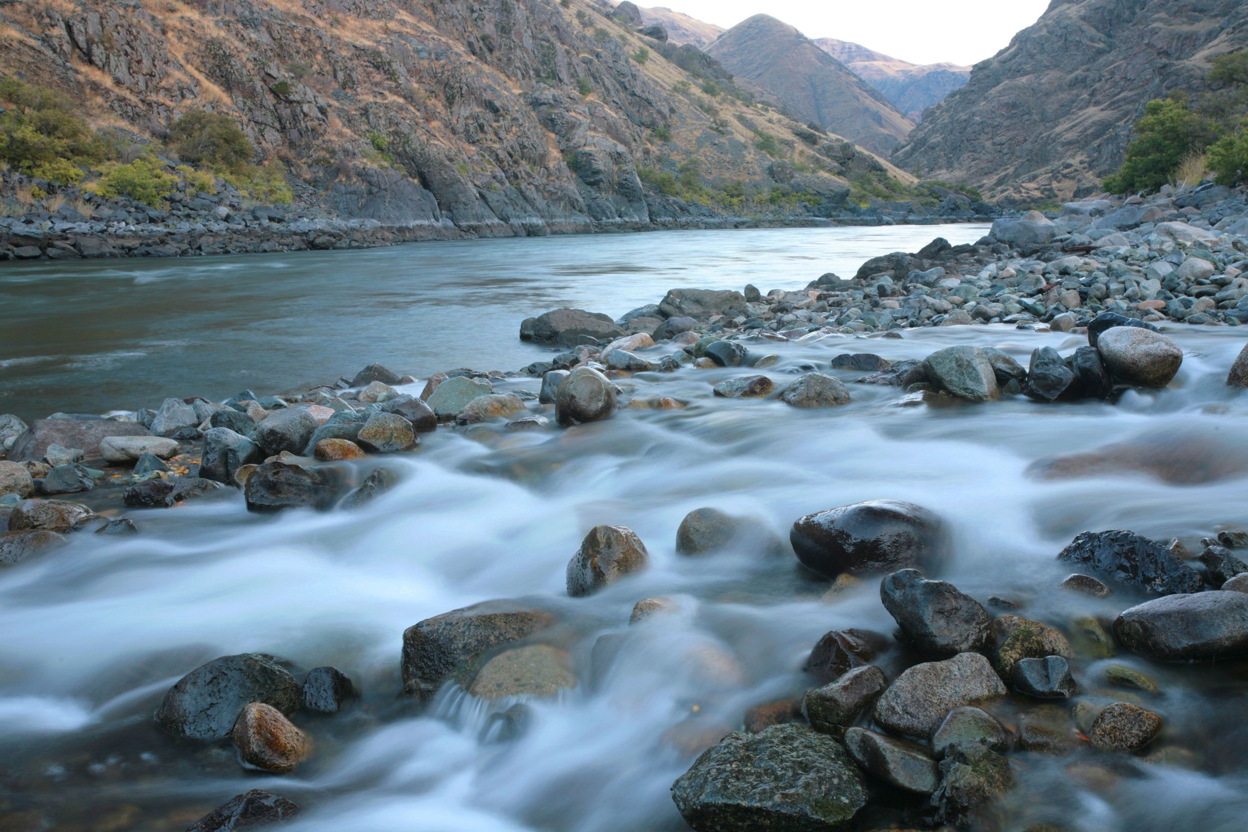 The Wild and Scenic Snake River