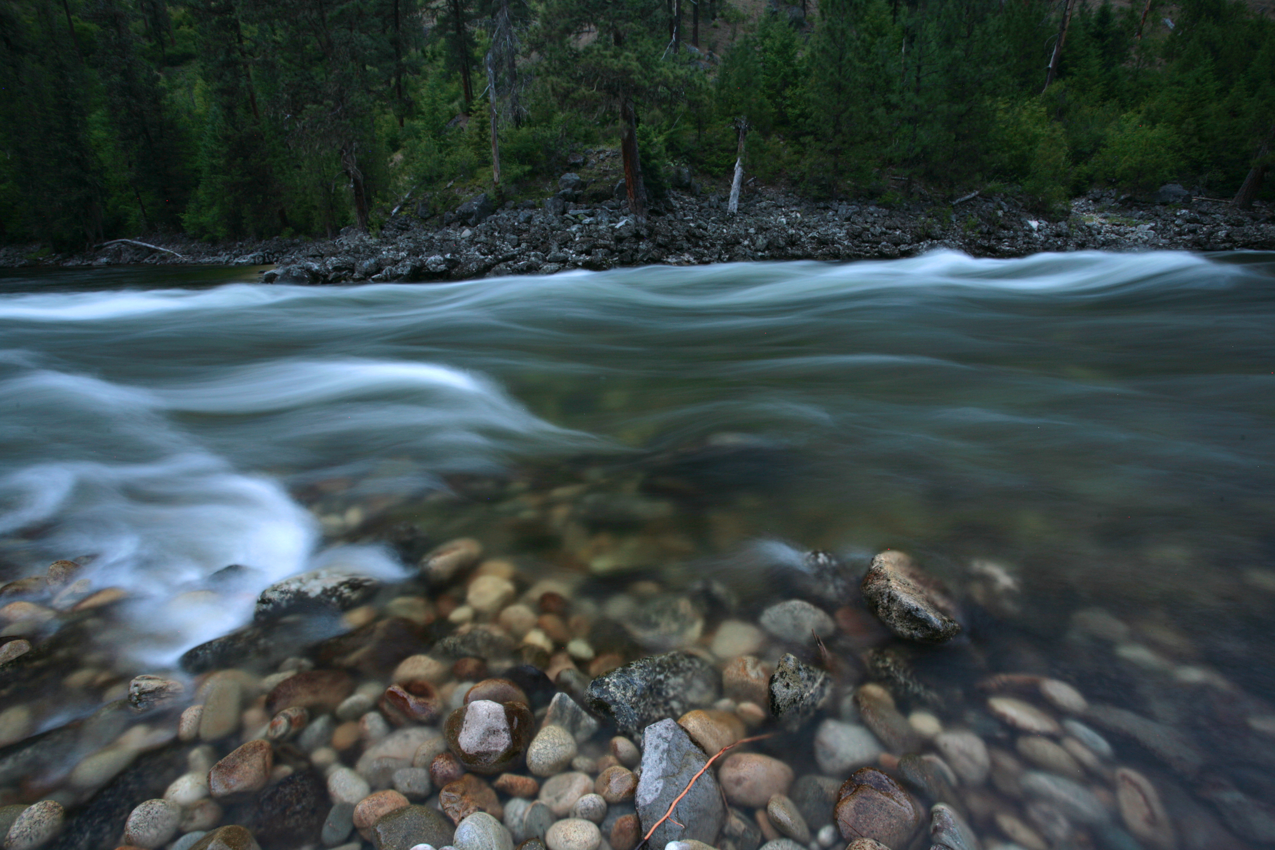 The Wild and Scenic Selway River