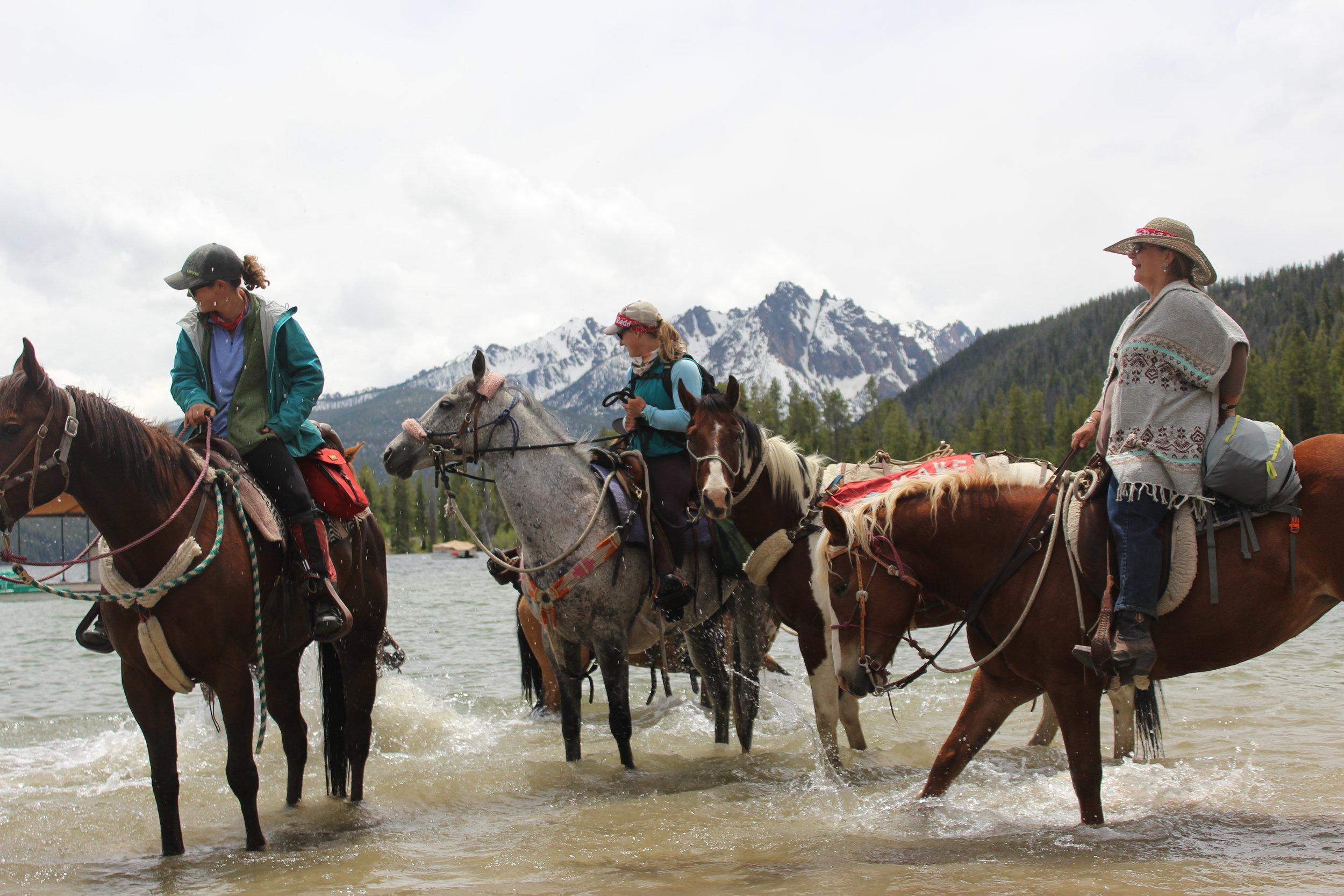 16- Horses in Lake 5.JPG