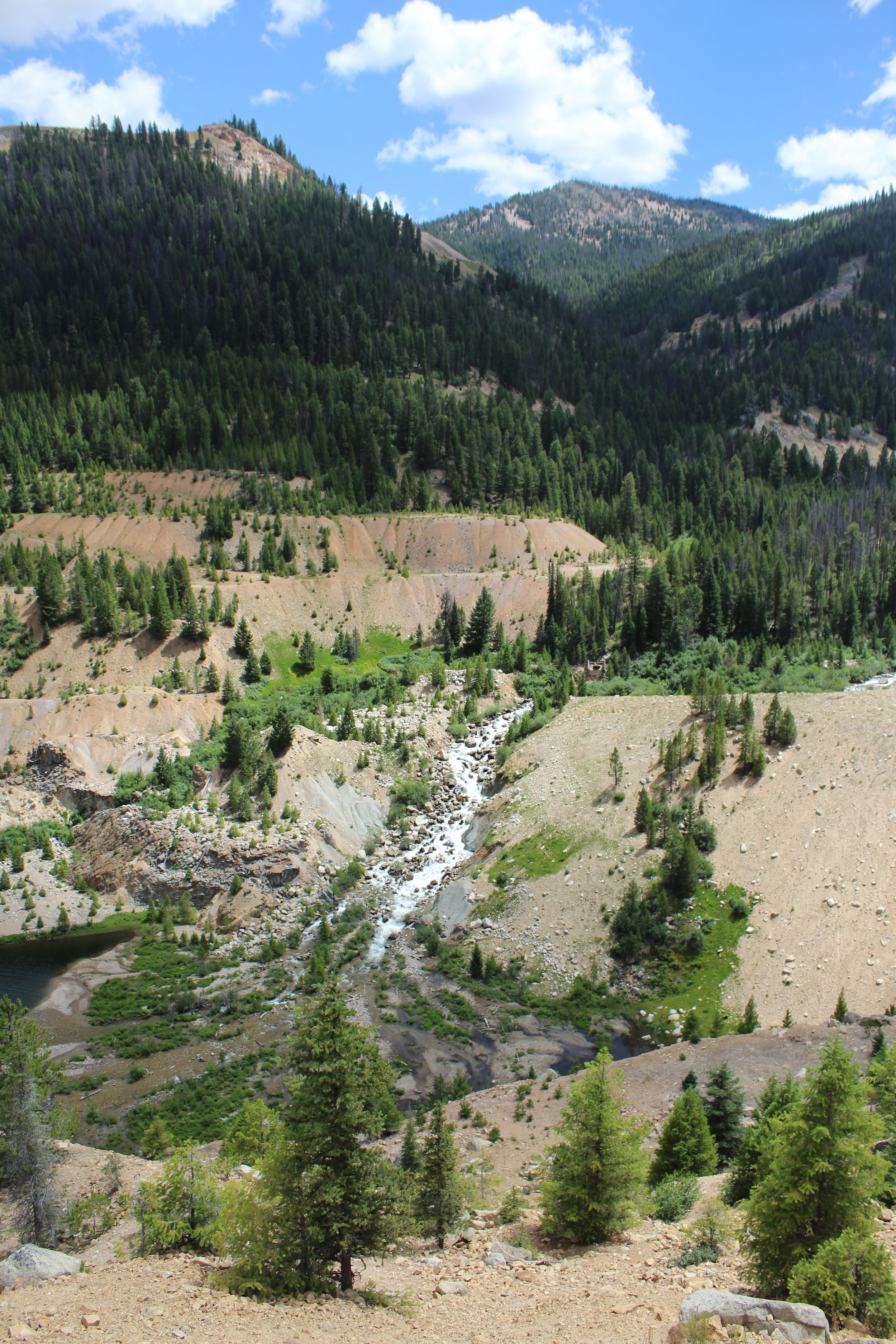 Partially reclaimed East Fork of the South Fork