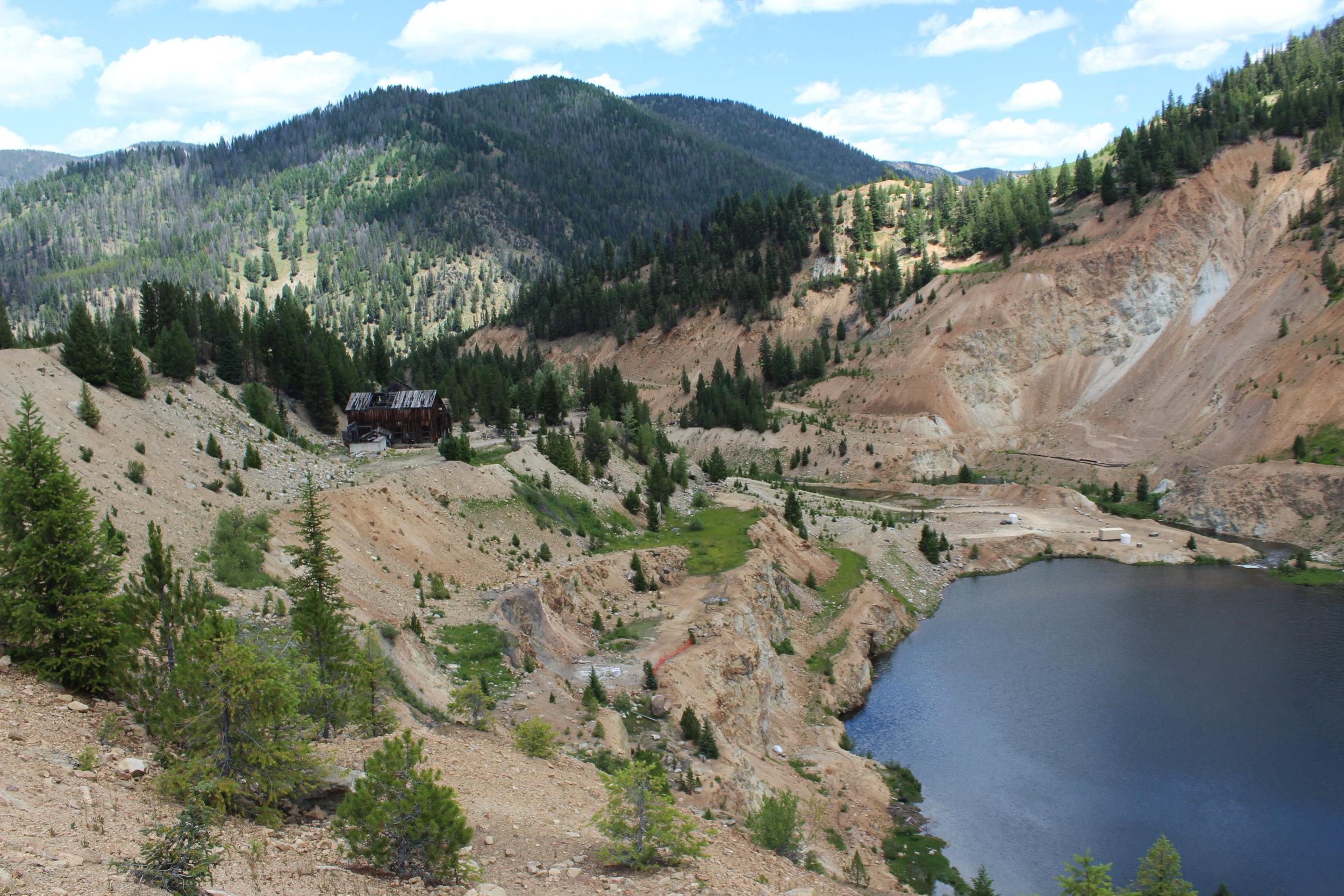 Yellow Pine Pit