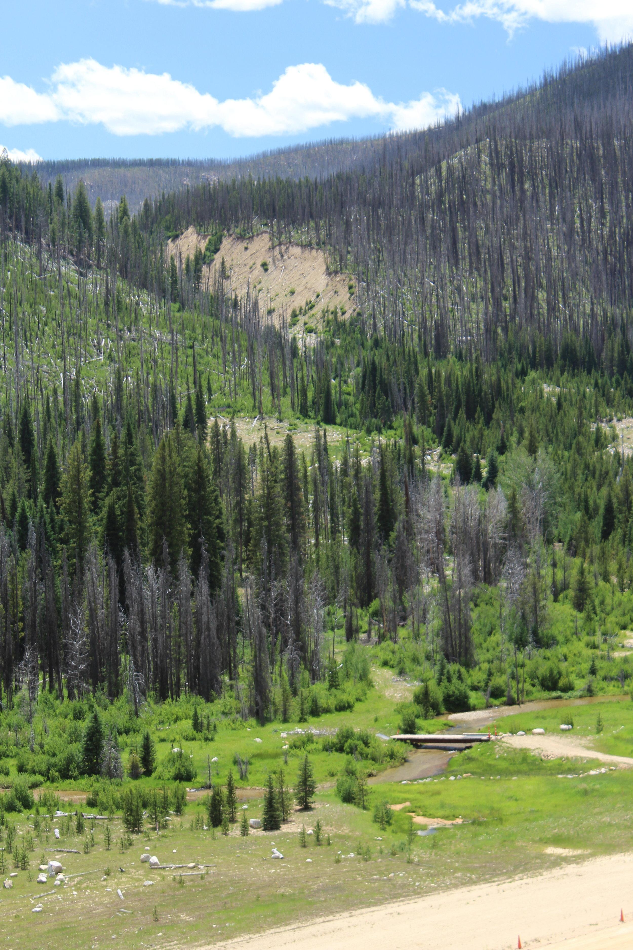 Repaired Meadow Creek