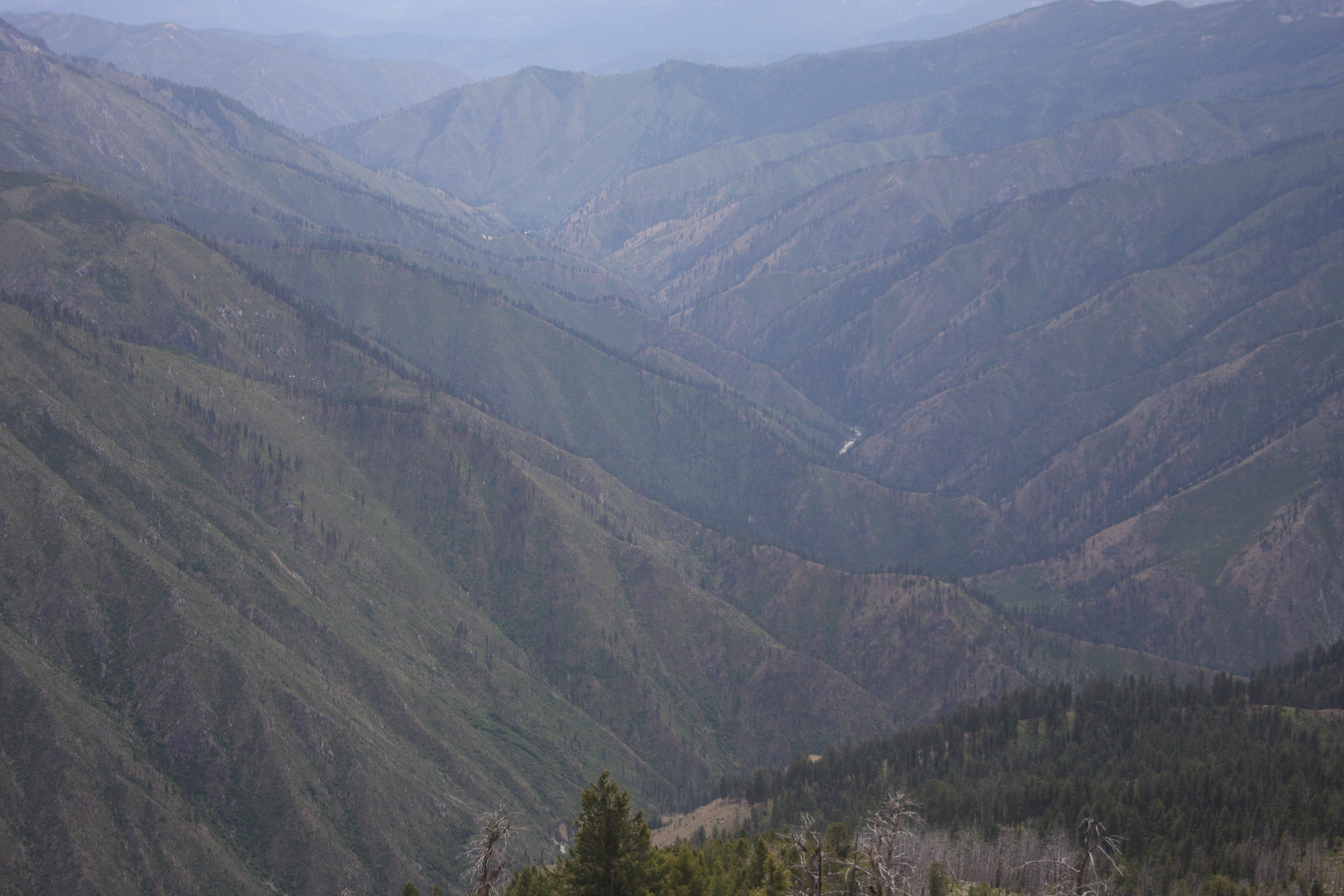 South Fork of the Salmon River