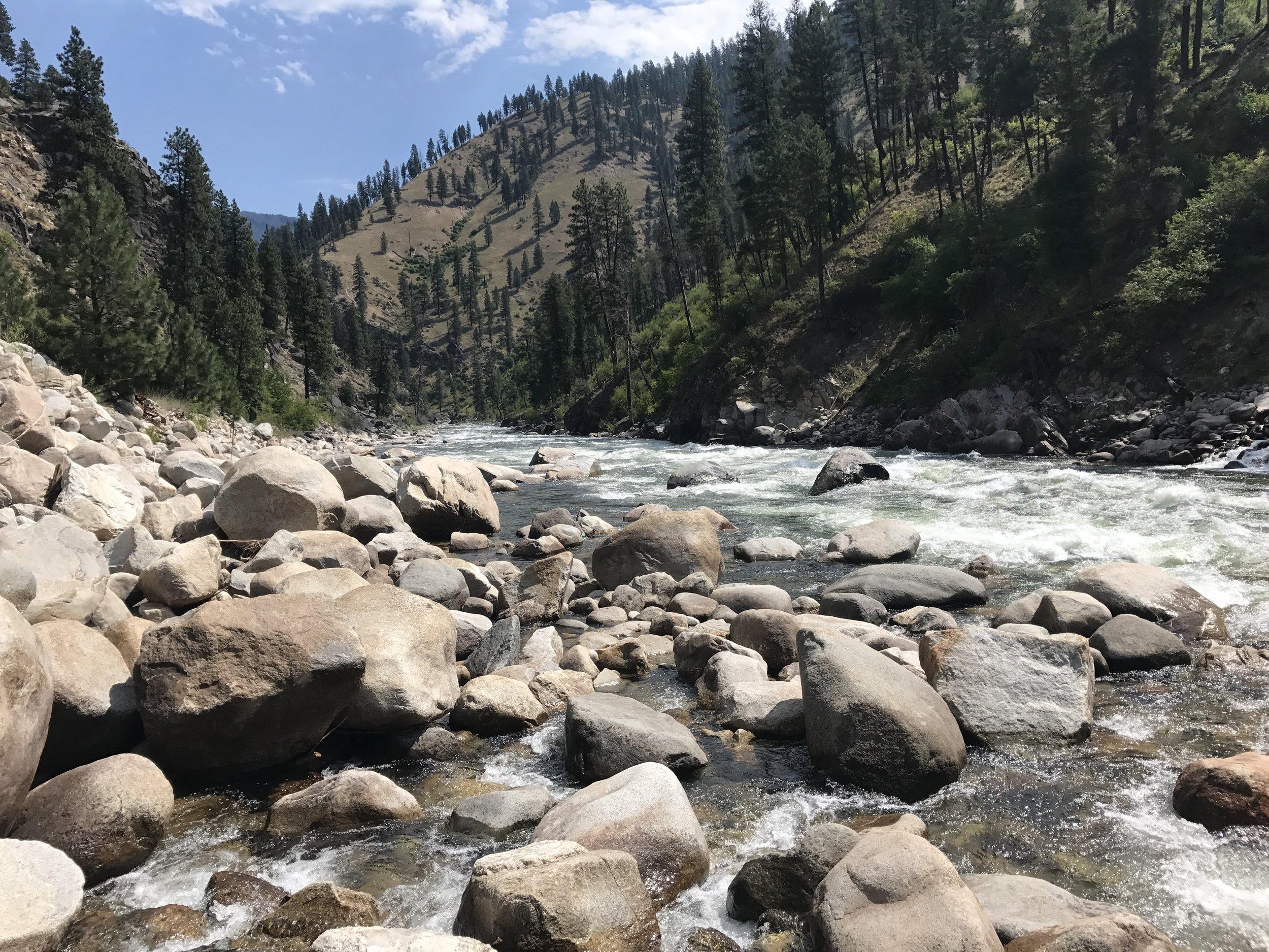 South Fork Salmon River  @Nate Ostis