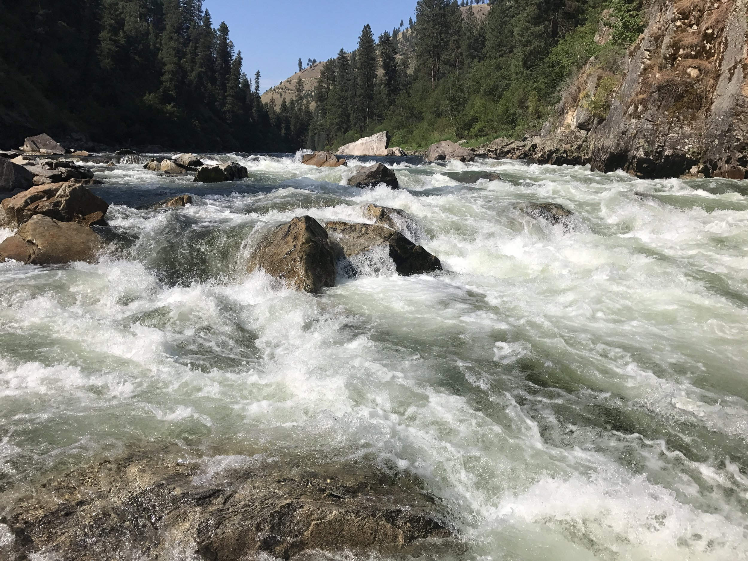 South Fork Rapids  @Nate Ostis