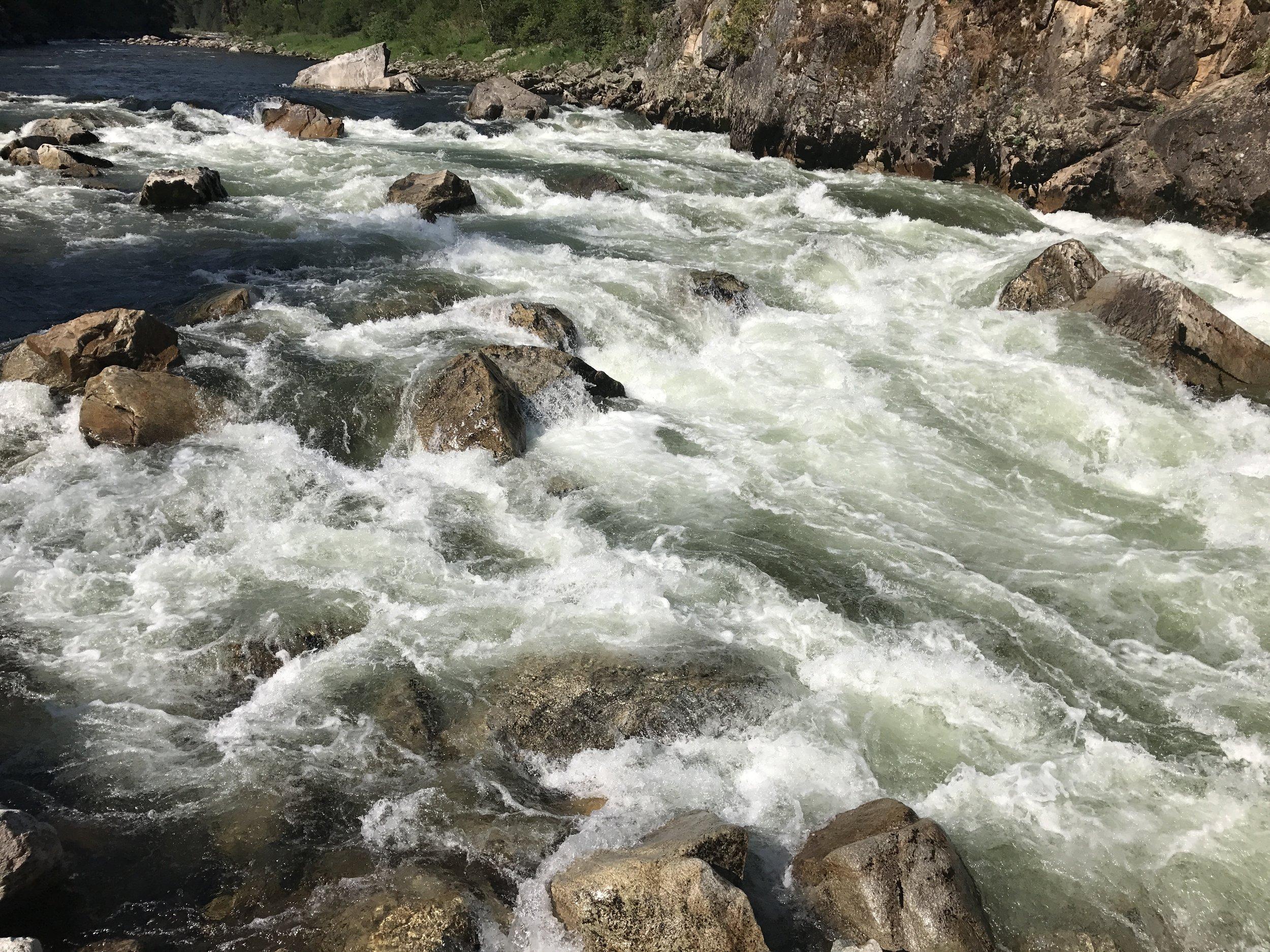 South Fork Salmon River whitewater  @Nate Ostis