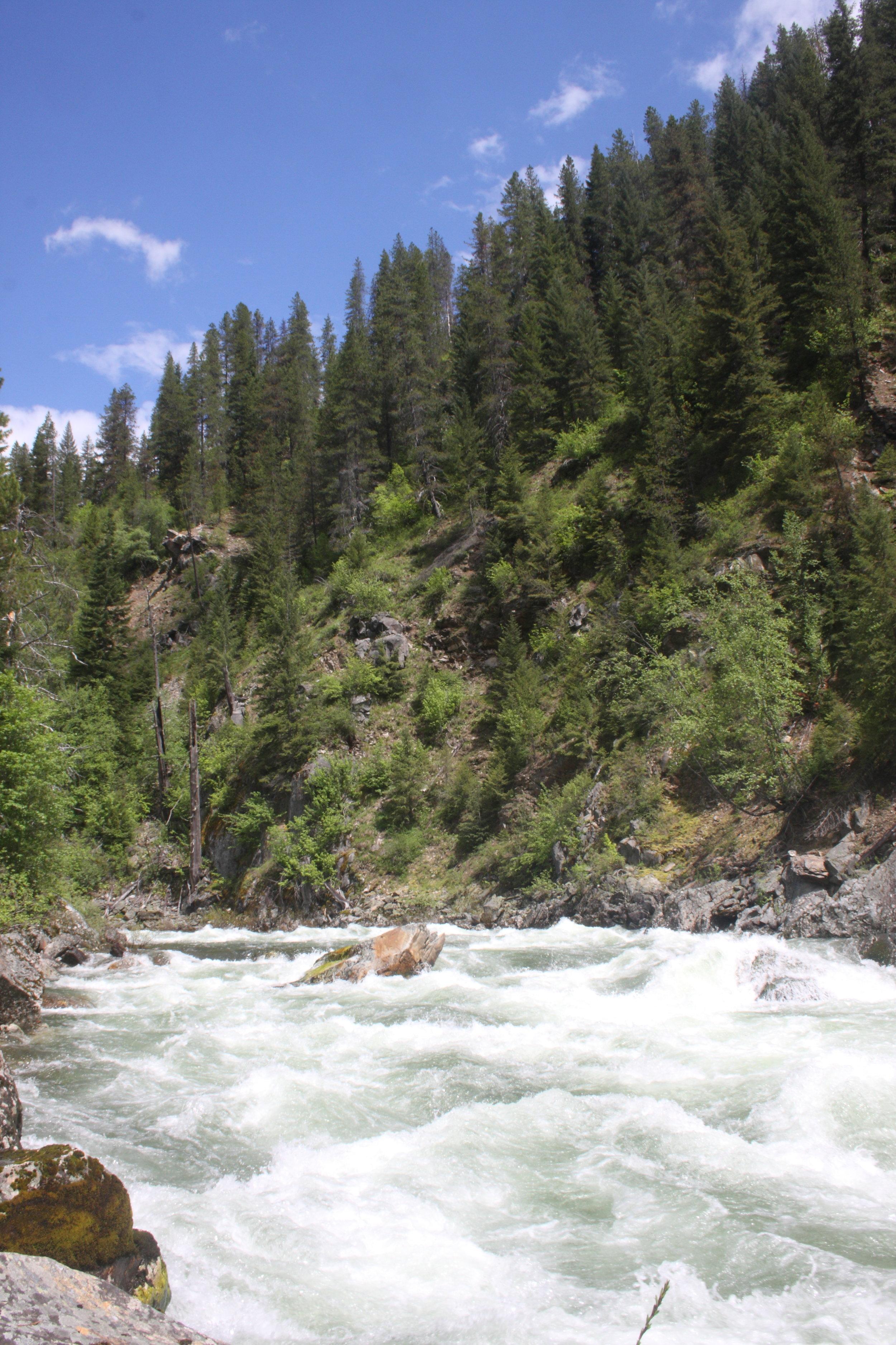 North Idaho170.JPG