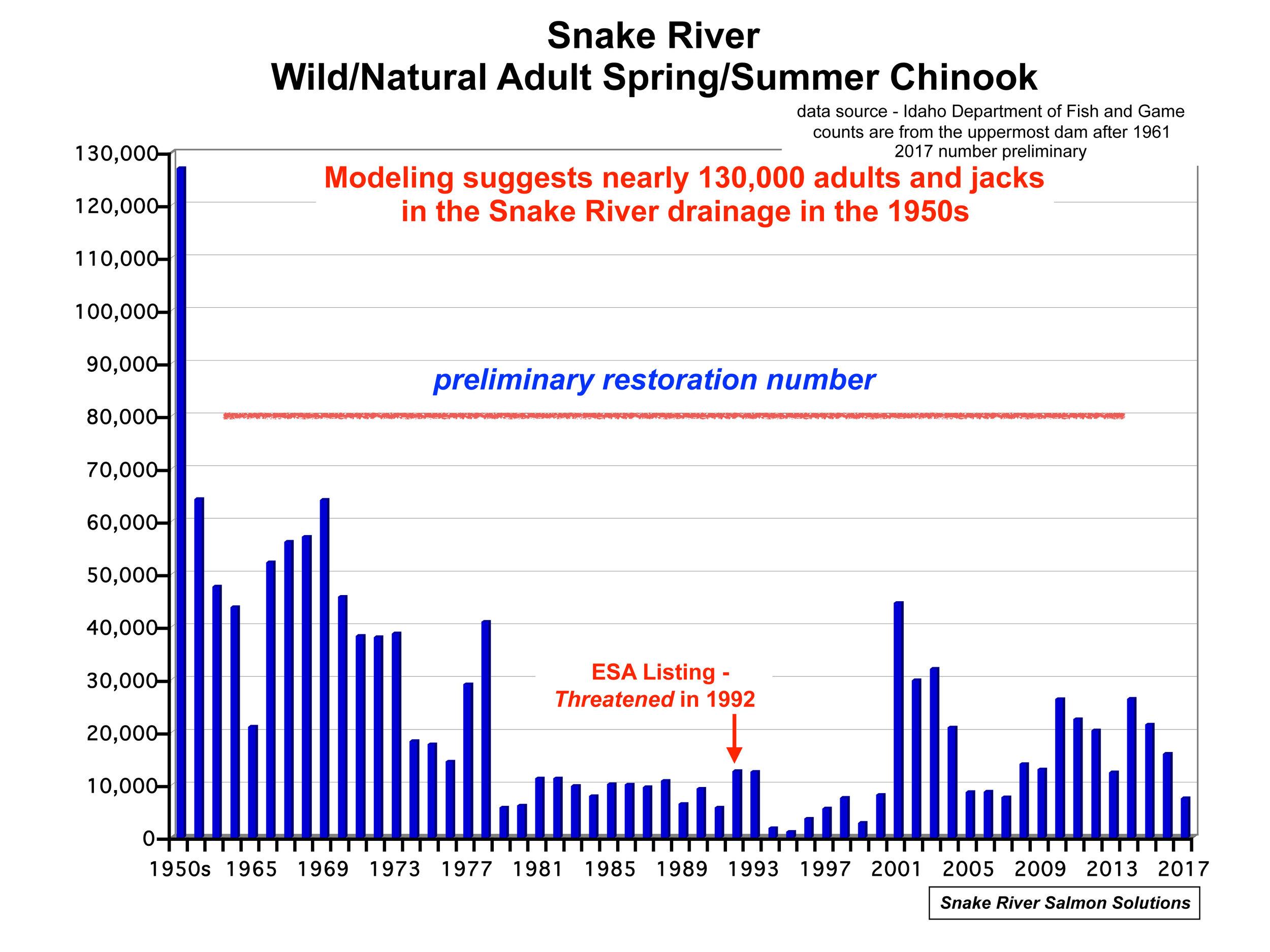 Chinook Graph.jpg