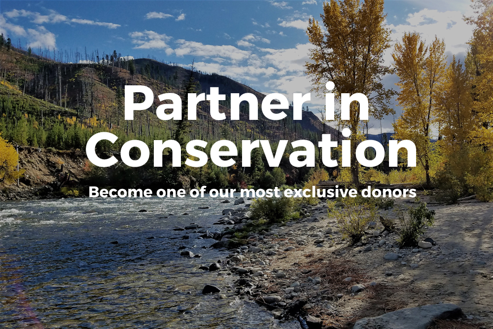 Partner In Conservation button.jpg