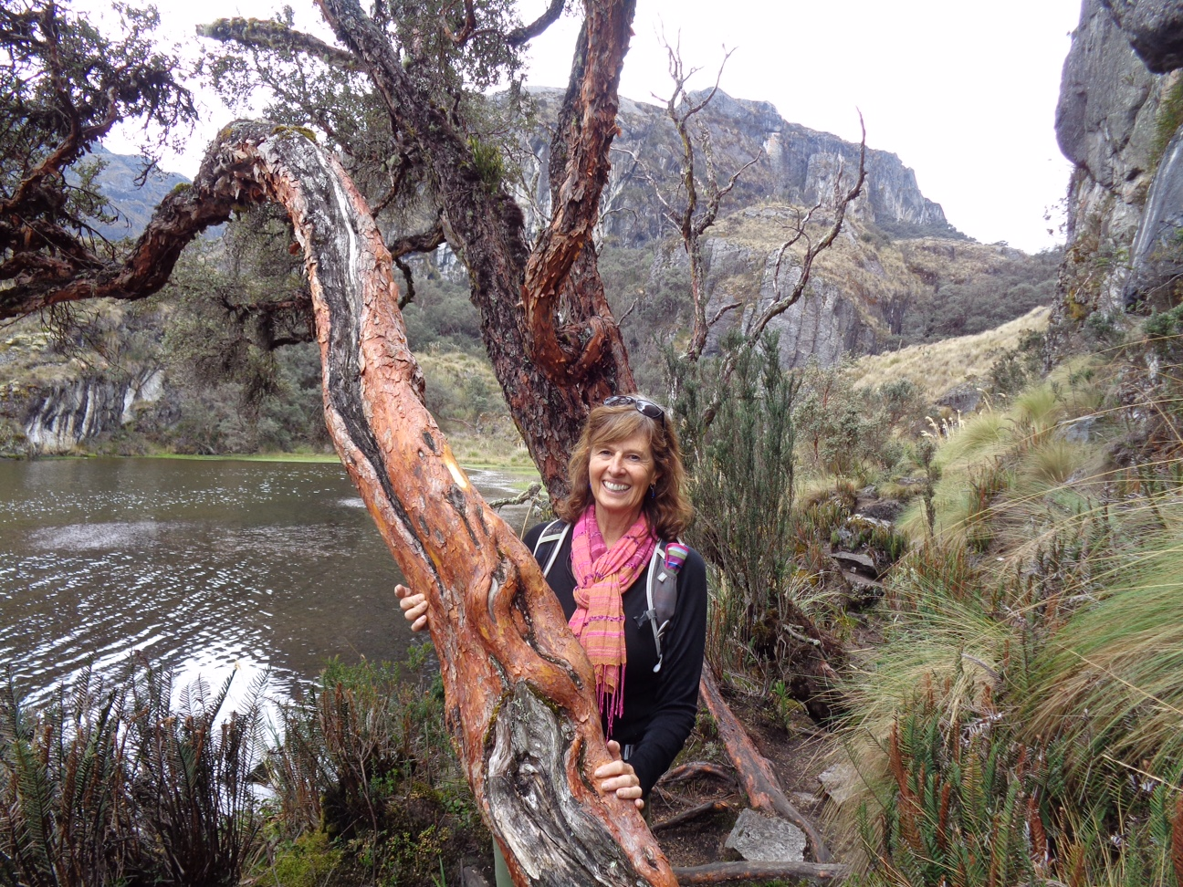 """""""I have a personal and professional relationship with the South Fork Salmon river watershed, which I am grateful to have had for the last 25 years. I am extremely concerned that some of the unique qualities of the South Fork are threatened and may be destroyed by the current proposal to reopen mining in the Stibnite area. The connectivity of ecosystems needs intact habitats for many species, aquatic and terrestrial. Analysis of potential impacts from the current mining proposal must identify requirements of all species which could be affected within the immediate area and downstream in the South Fork.""""   -Mary Faurot, McCall, Idaho"""