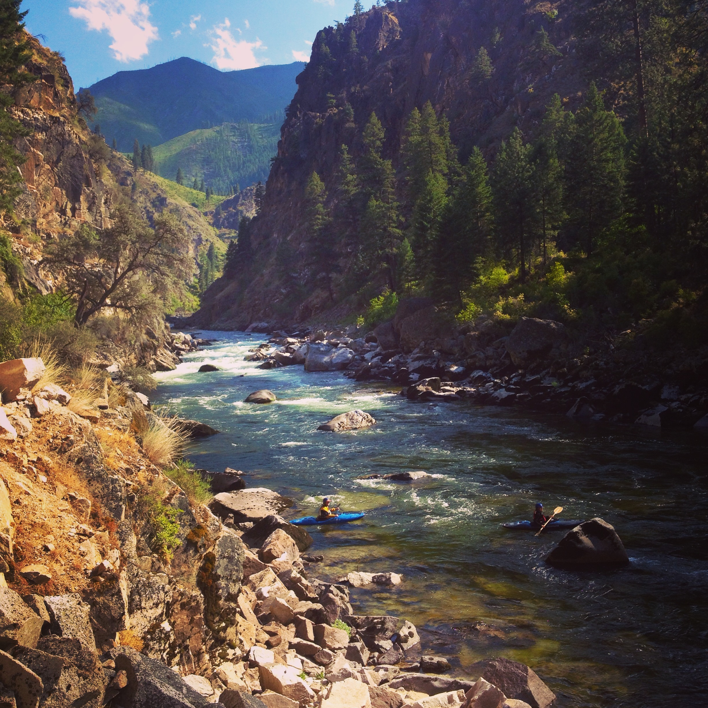 """Although I grew up in Idaho, I only ventured to the South Fork of the Salmon in recent years, and feel so grateful to know this special place. Unparalleled scenery, challenging whitewater, abundant wildlife—all in a remote backcountry setting. I applaud the efforts of Idaho Rivers United and all the individuals working to protect this gem of a river canyon. Let's preserve the South Fork for generations to come.""   -Laura Bechdel, McCall, Idaho"