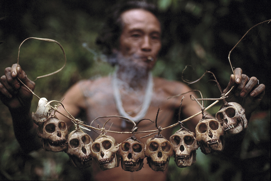 9MS3. Monkey Skulls.jpg
