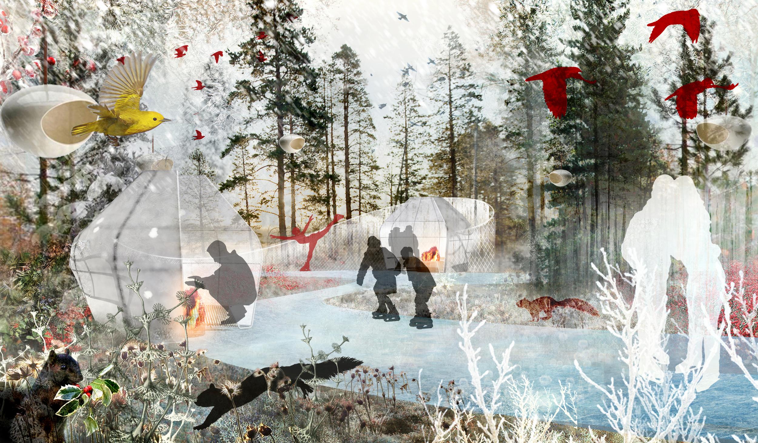 BA_calgary_view frozen garden.jpg