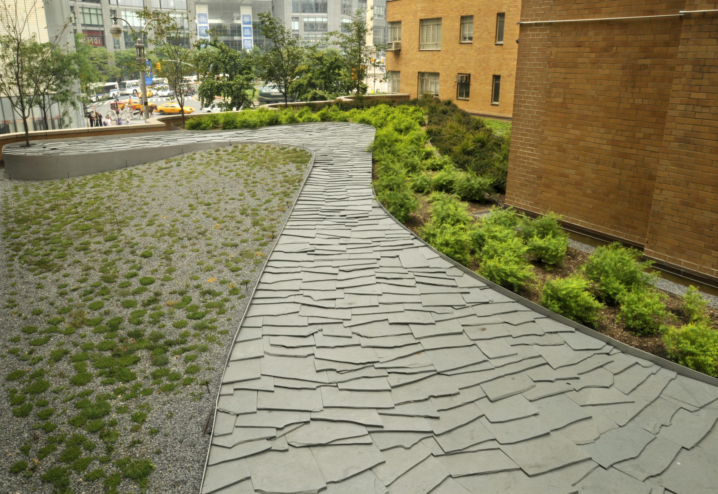 BA_240 Central Park_Mark Dye_path.jpg