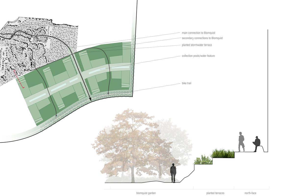 BA_dukemasterplan_plan and section garden.jpg
