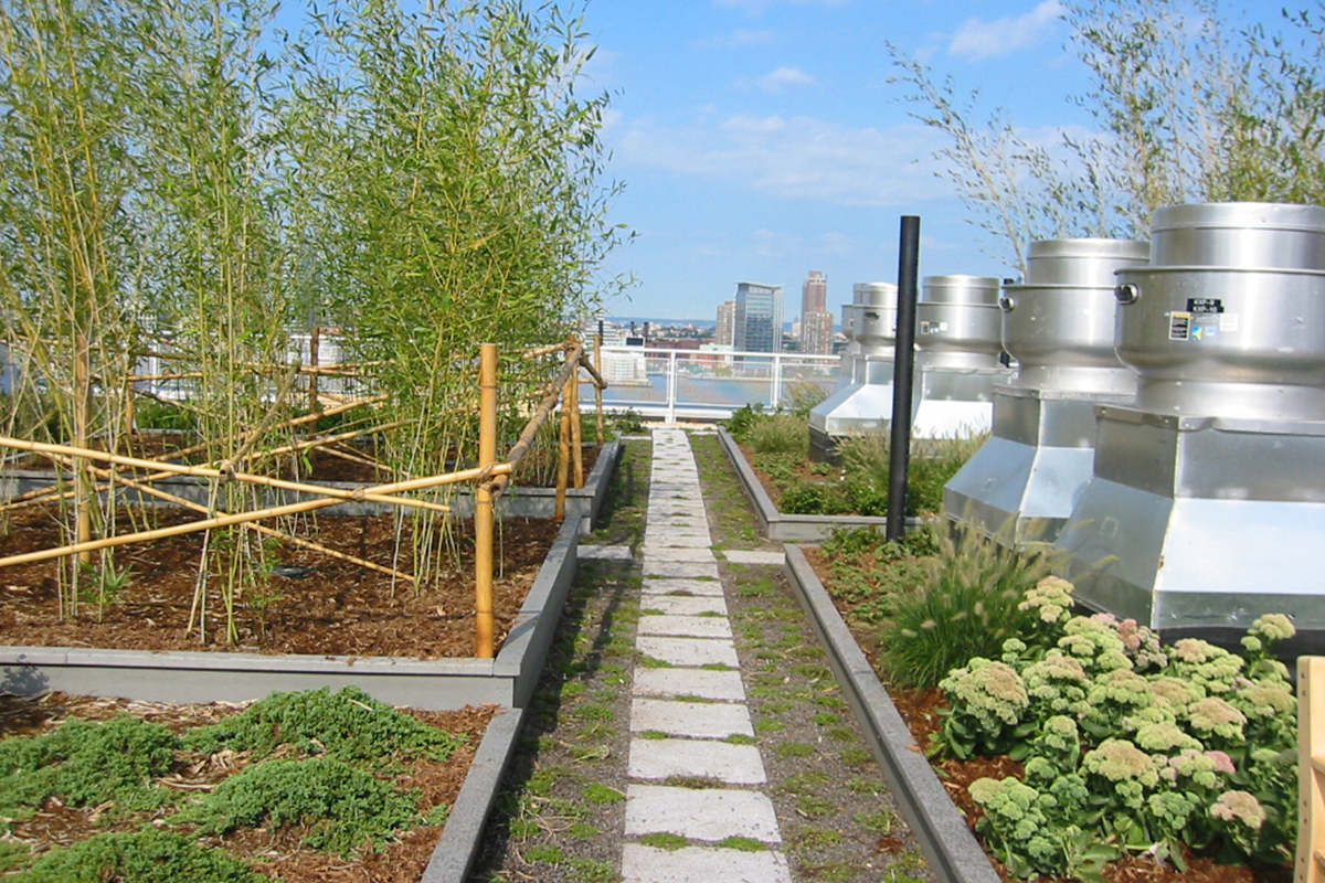 BA_solaire_garden_1.jpg