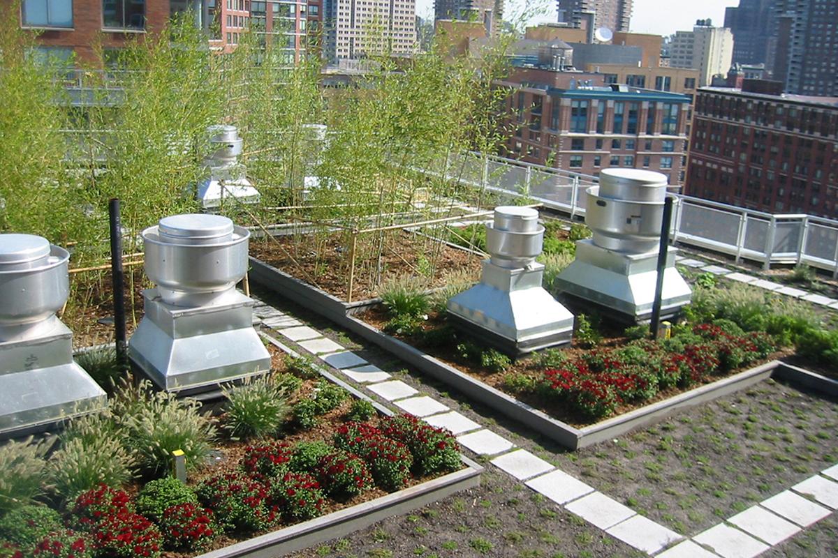 BA_solaire_garden_3.jpg