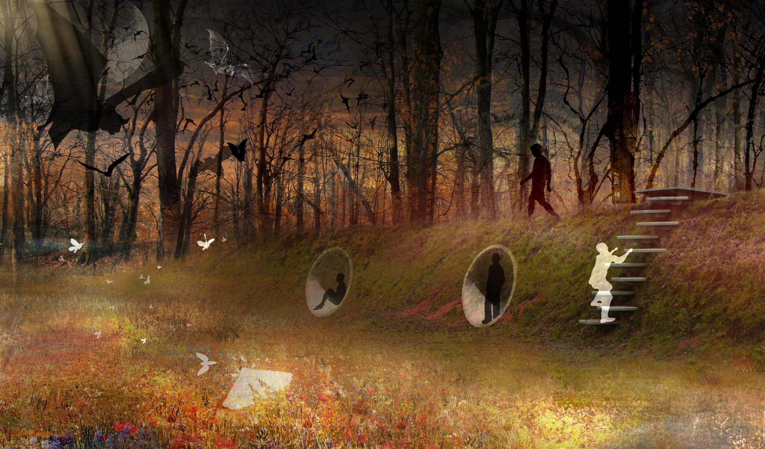 BA_calgary_view forest bats.jpg