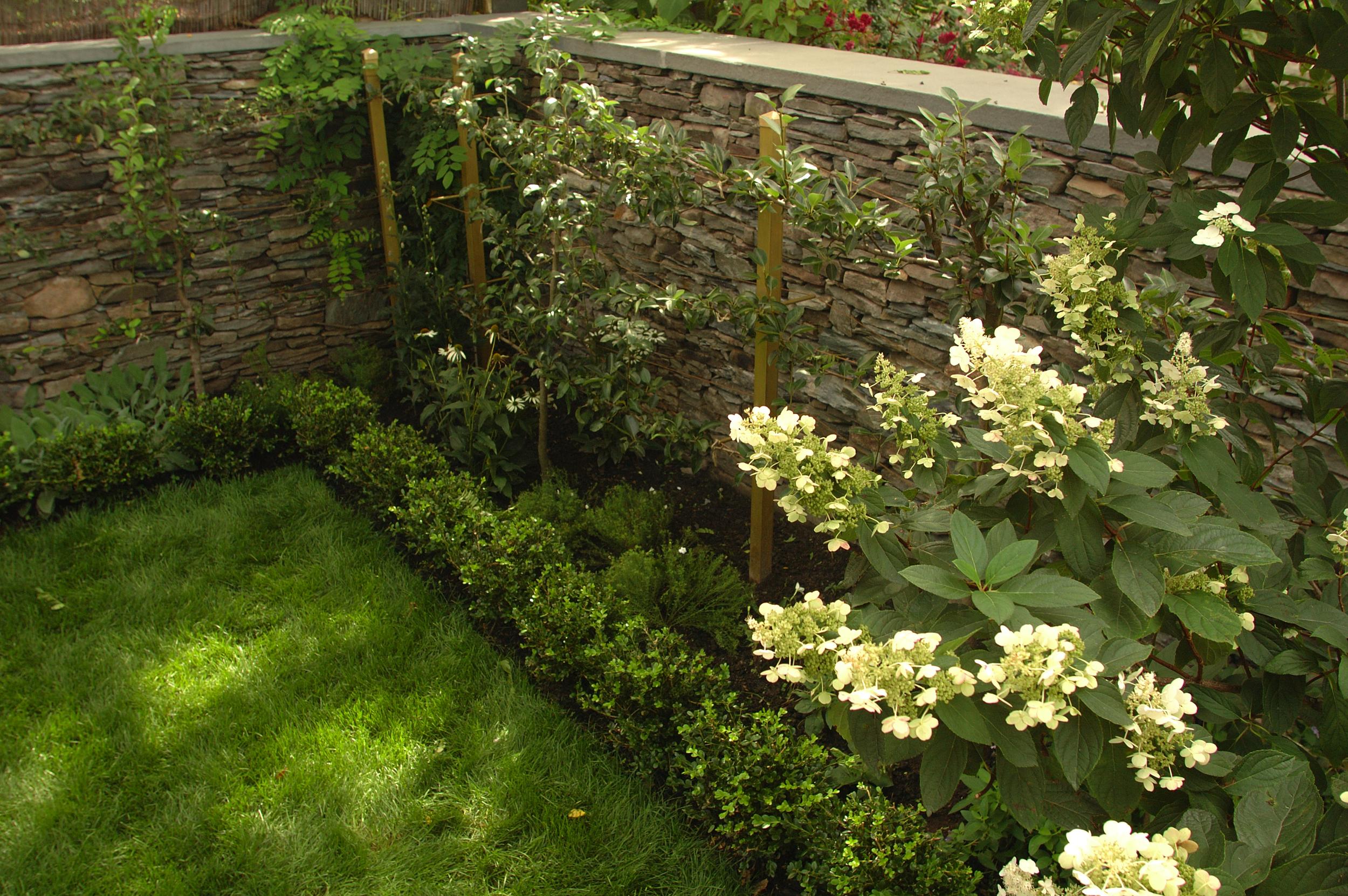 BA_Newport Garden_1_Mary Beth Meehan.jpg