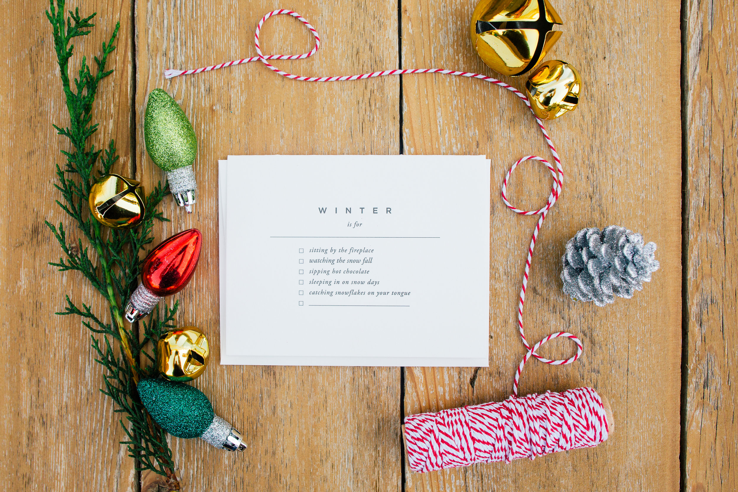 Holiday Christmas Snail Mail Card