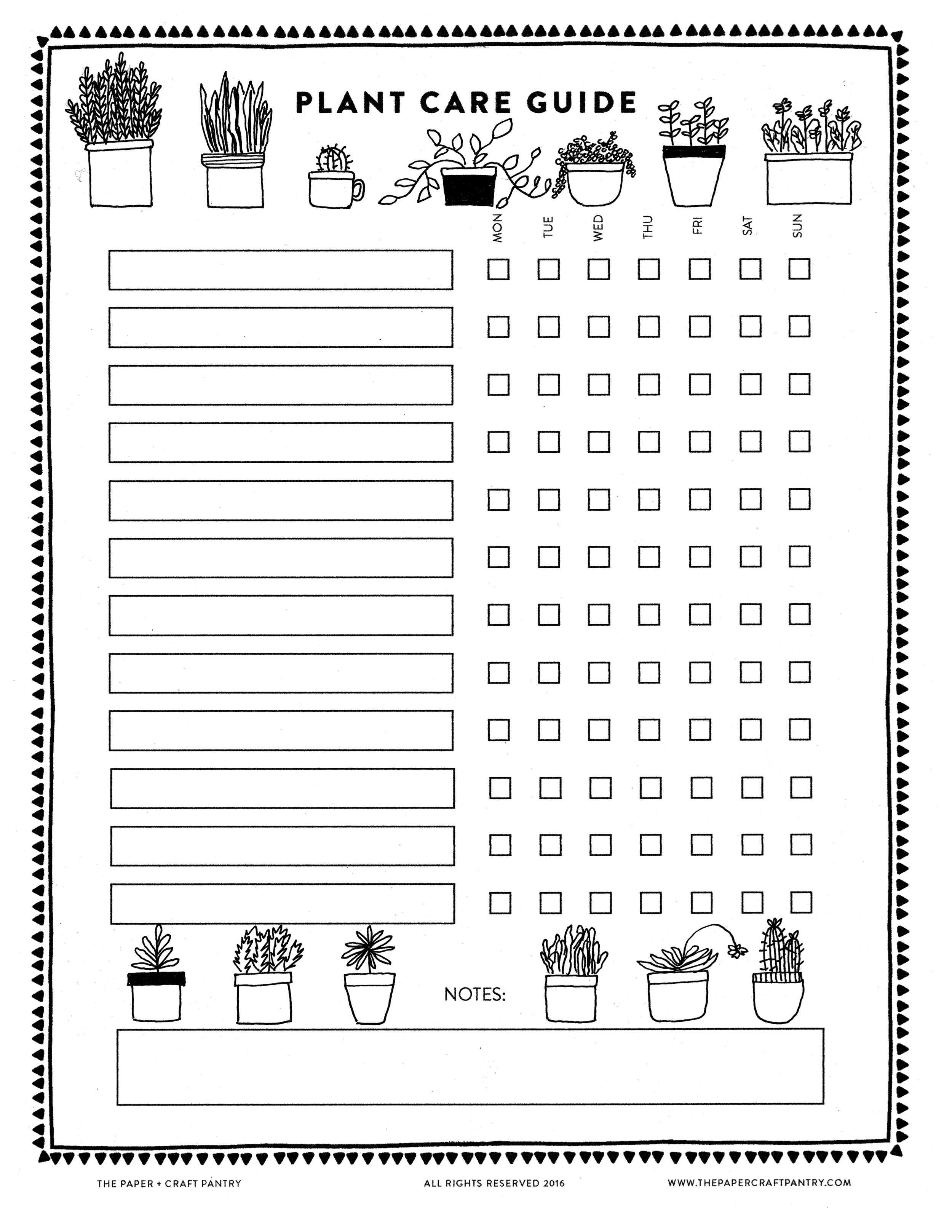 Download Our Printable Plant Care Guide + Watering Schedule for Your House Plants